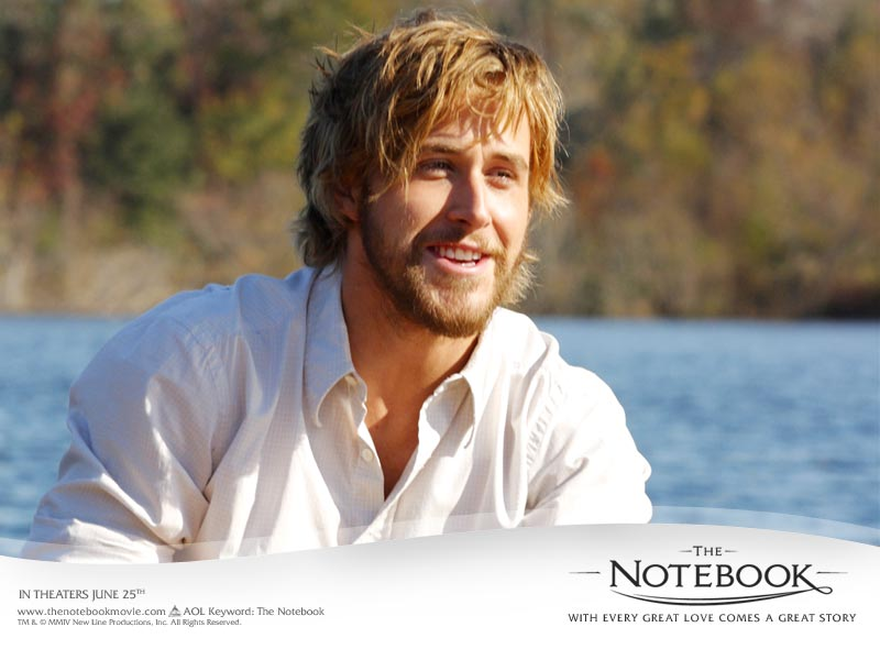 The Notebook | aquahaus  The